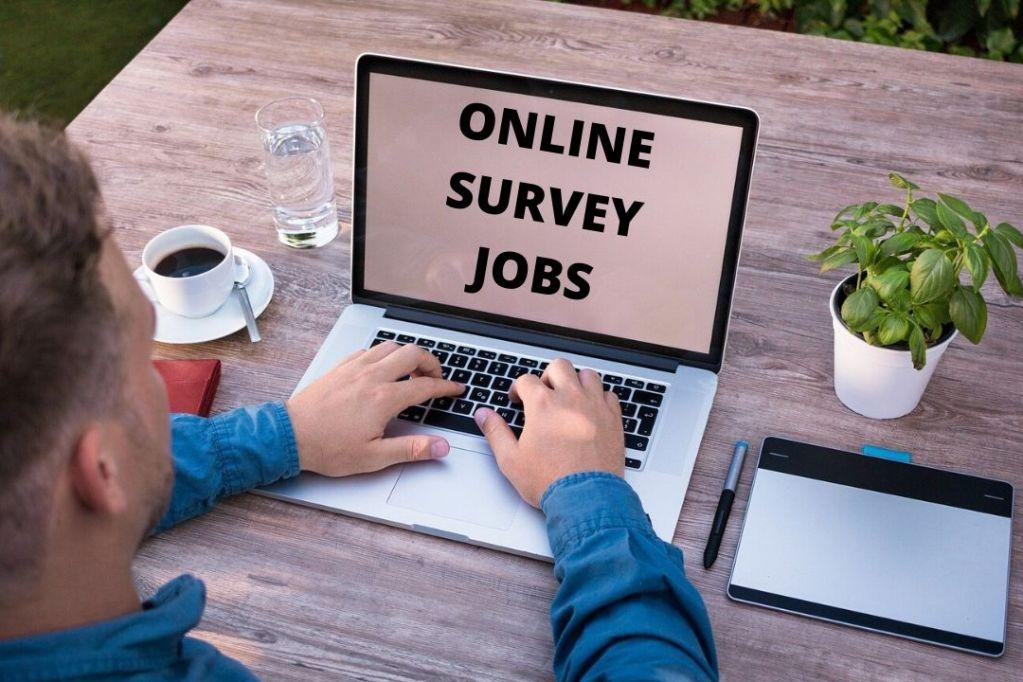 Online Survey Jobs In India क्या है ऑनलाइन सर्वेक्षण का काम